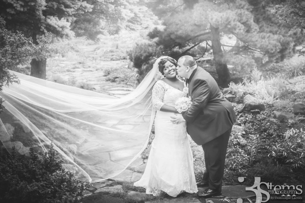 Purple Wedding Ottawa
